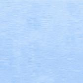 Carolina Blue